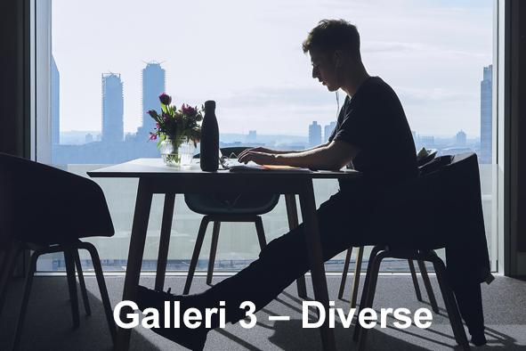 Galleri 3